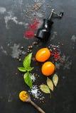 Tempera a pimenta de sino, manjericão, folha de louro, cúrcuma, tomate em um fundo rústico escuro Vista aérea, superior fotografia de stock royalty free