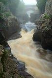 Temperance rzeka w Minnestoa Zdjęcie Stock
