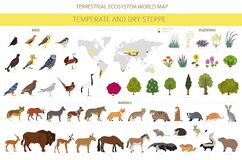 Free Temperate And Dry Steppe Biome, Natural Region Infographic. Prarie, Steppe, Grassland, Pampas. Terrestrial Ecosystem World Map. Royalty Free Stock Photography - 177117397