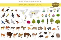 Free Temperate And Dry Steppe Biome, Natural Region Isometric Infographic. Prarie, Steppe, Grassland, Pampas. Terrestrial Ecosystem Stock Photo - 177117330