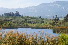 Temperate Climate. Citrus groves, lake, and coastal mountain range near Santa Barbara, California in early summer Royalty Free Stock Images