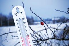 Temperatur im Winter stockbild