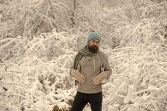 Temperatur och att frysa, kallt knäpp, snöfall arkivbilder