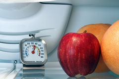 Temperatura del frigorifero fotografia stock libera da diritti