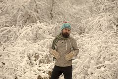Temperature, freezing, cold snap, snowfall. Skincare and beard care in winter. Winter sport and rest, Christmas. Man in thermal jacket, beard warm in winter stock images