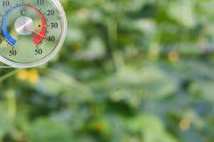 Temperaturmeter im Glashaus Stockfotos