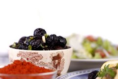 Tempered dry black olives Stock Image