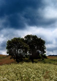 Tempesta?.(3) fotografia stock