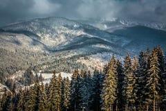 Tempesta carpatica della neve Fotografia Stock Libera da Diritti