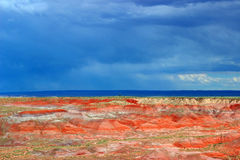 Tempesta che si avvicina al deserto dipinto, parco nazionale petrificato, AZ Fotografia Stock Libera da Diritti