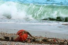 Tempesta del mare Fotografia Stock