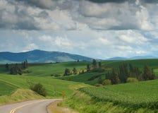 Tempesta del paese del frumento, Palouse, Washington fotografie stock libere da diritti