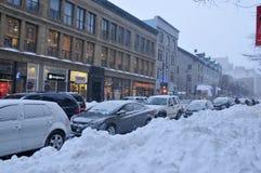 Tempesta della neve Immagini Stock Libere da Diritti
