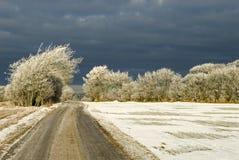 Tempesta della neve che viene in su Fotografie Stock Libere da Diritti