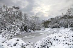 Tempesta della neve che viene in su Fotografia Stock
