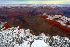 Tempesta della neve nella foresta del grande canyon, AZ Fotografie Stock Libere da Diritti