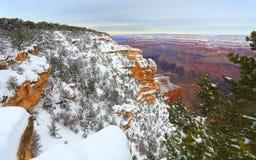 Tempesta della neve nella foresta del grande canyon, AZ Fotografia Stock