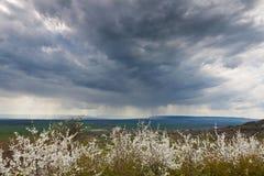 Tempesta della primavera fotografie stock libere da diritti