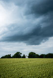 Tempesta di estate Fotografie Stock Libere da Diritti