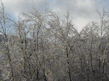Tempesta di ghiaccio Immagine Stock