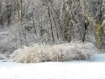 Tempesta di ghiaccio Immagini Stock Libere da Diritti