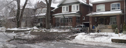 Tempesta di ghiaccio di Toronto fotografia stock libera da diritti