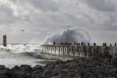 Tempesta di sorveglianza del mare della gente Fotografia Stock Libera da Diritti