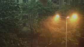 Tempesta e Heavy Rain 3 - pioggia persistente e tempesta molto forte Gli alberi stanno muovendo forte a destra e a sinistra stock footage