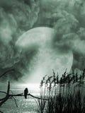 Tempesta nel lago Fotografie Stock