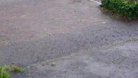 Tempesta nelle vie di un villaggio nei Paesi Bassi, vie della pioggia persistente che traboccano con acqua, il tempo olandese ed  video d archivio
