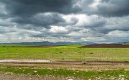 Tempesta sopra i giacimenti agricoli della molla Fotografie Stock Libere da Diritti