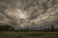Tempesta sopra la foresta fotografie stock