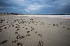 Tempesta sopra le pentole del sale sull'isola del canguro, Australia Meridionale fotografia stock libera da diritti