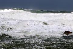 Tempesta sul Mar Mediterraneo Immagine Stock