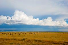 Tempestad de la lluvia distante imagenes de archivo
