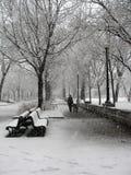 Tempestad de nieve en parque en Montreal Imagen de archivo libre de regalías