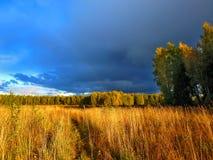 Tempestad de truenos foto de archivo
