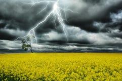 Tempestad de truenos Imagenes de archivo