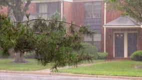 Tempestad de truenos pesada con los árboles de doblez del viento de la lluvia en área residencial almacen de metraje de vídeo