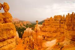 Tempestade da chuva do verão em Bryce Canyon National Park Fotos de Stock