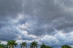 Tempestade da fabricação de cerveja nos trópicos Foto de Stock