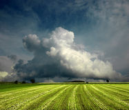 Tempestade da mola Fotografia de Stock Royalty Free