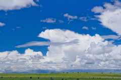 Tempestade da mola nas planícies fotos de stock royalty free
