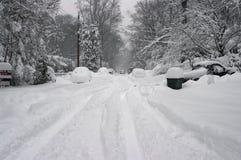 Tempestade da neve Fotos de Stock
