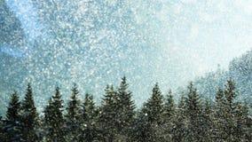 Tempestade da neve Fotografia de Stock Royalty Free