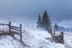 Tempestade da neve do esclarecimento em Rocky Mountains Imagem de Stock