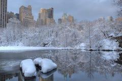 Tempestade da neve no lago imagens de stock