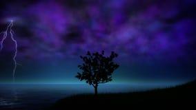 Tempestade da noite com laço do relâmpago