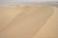 Tempestade de areia árabe fotografia de stock royalty free