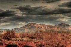 Tempestade de deserto Imagem de Stock Royalty Free